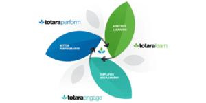 Totara Perform Learn Engage flower petal graph